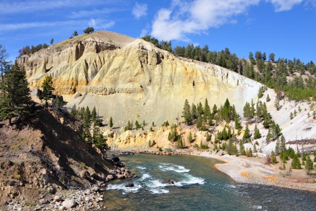 Goudgele rotswanden van de Yellowstone River