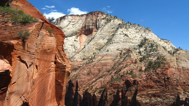 Rotsen in Zion National Park