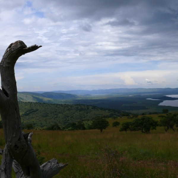 '27580' door Marayone