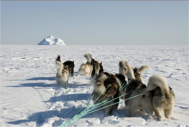 Naar de ijsberg