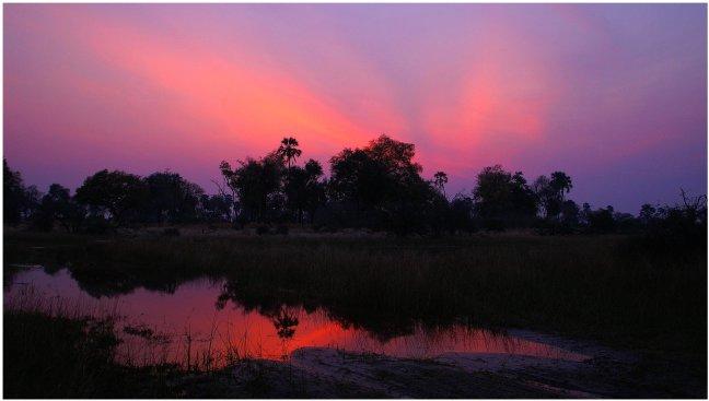 Paarse zonsondergang