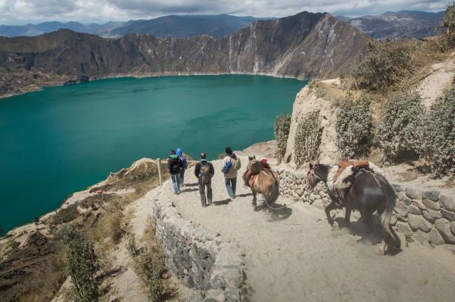 Quilota meer met ezeltje terug