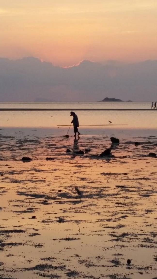 Locals op zoek naar zeediertjes