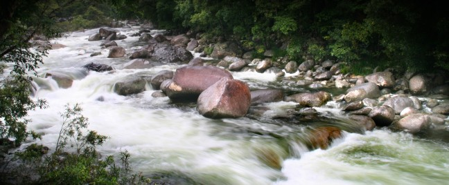 Mossman Gorge in Daintree national park