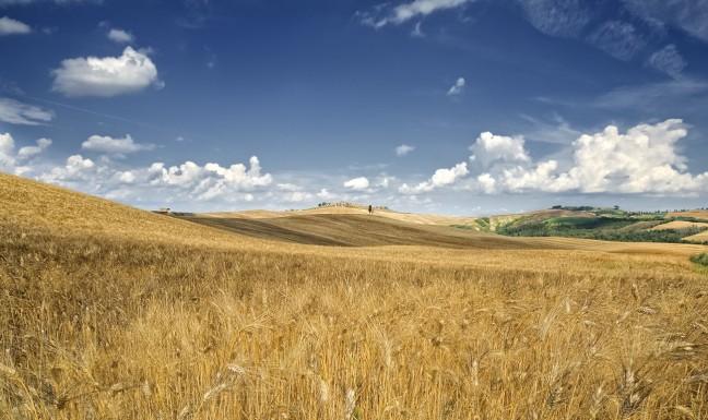 Le Crete -Toscane