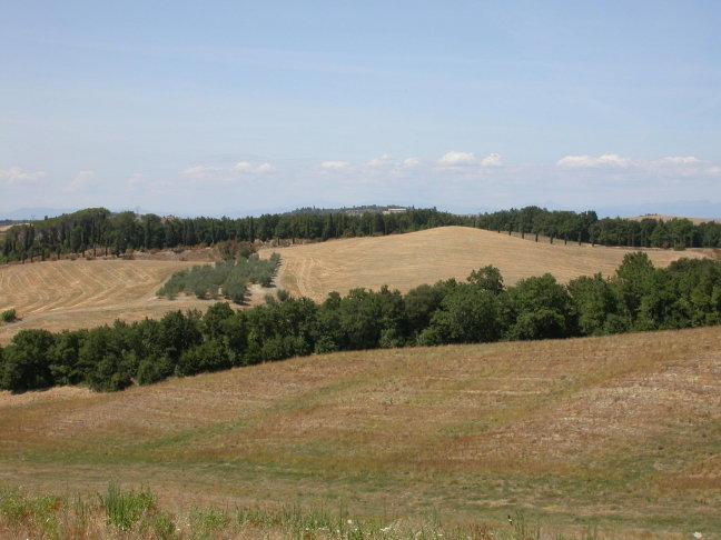 Landschap bij Certaldo