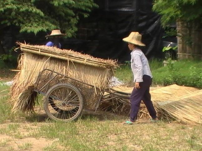 Traditioneel dorpsleven