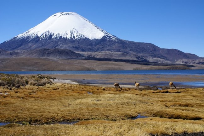 Vulkaan Parinacota