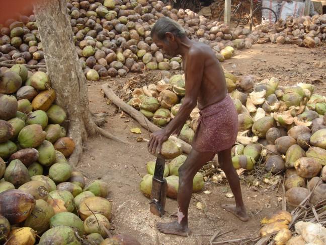 kokos peller
