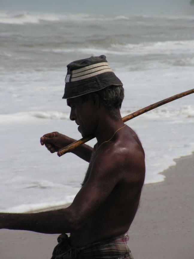 visser in de zee