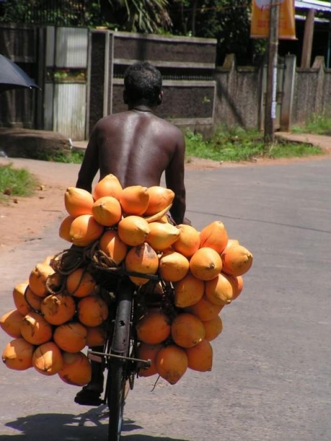 kokosnoten op de fiets
