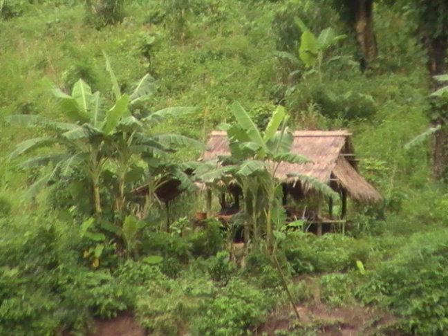 Hutje nabij Mekong