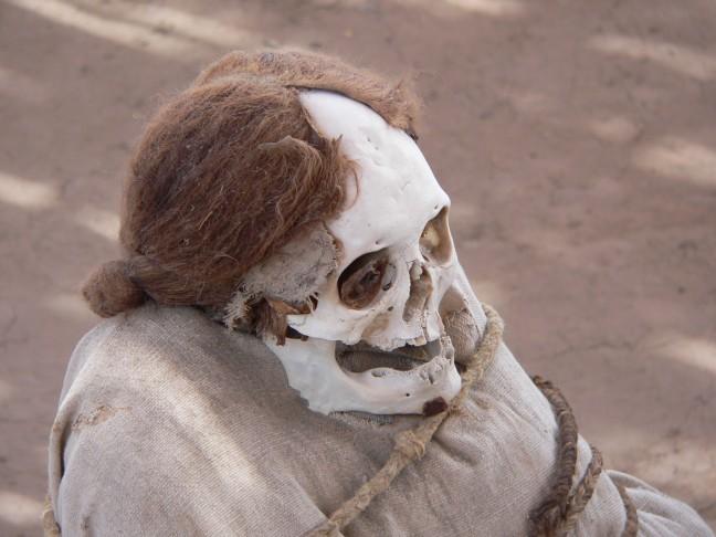 Mummie in Chaucilla