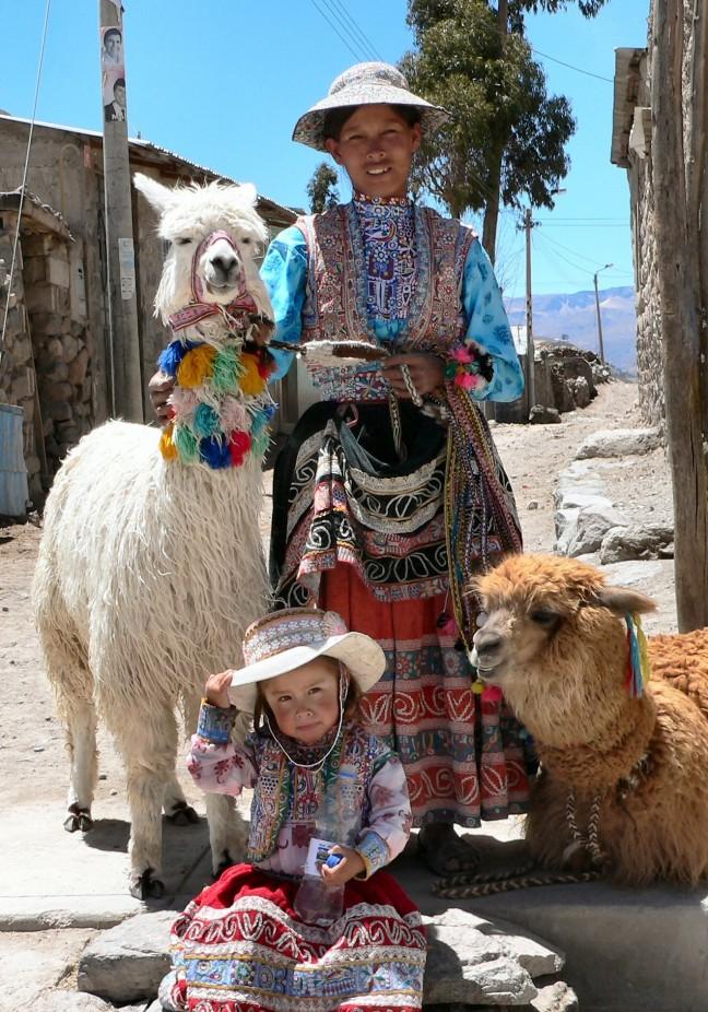 Moeders met dochter en hun alpaca's