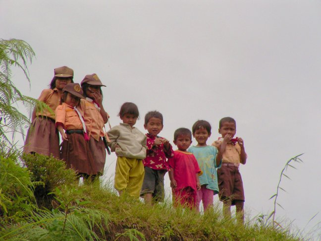 kids Samosir