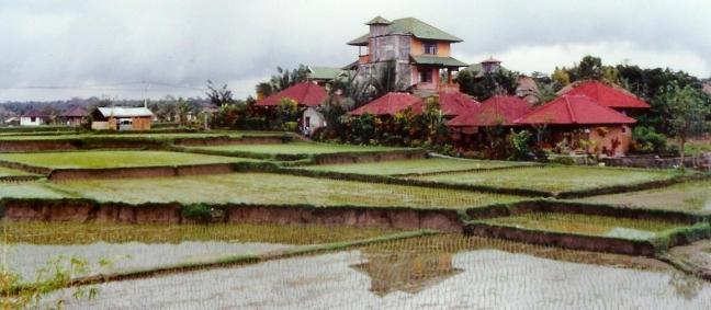 1997: Bali:sawa's (rijstvelden).