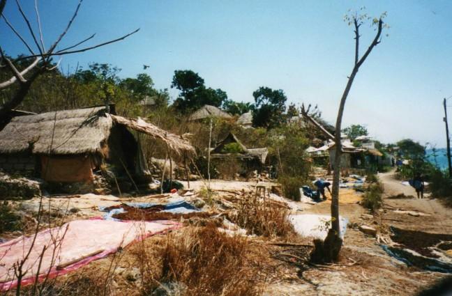 het dagelijks leven op lamborgan eiland