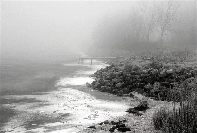 mist aan het meer