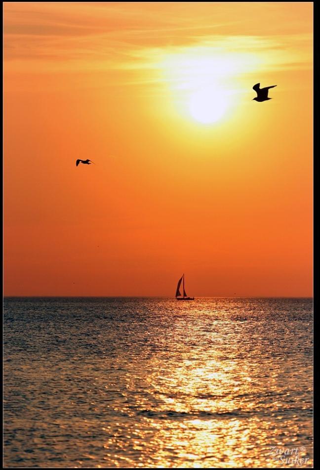 Aan de kust