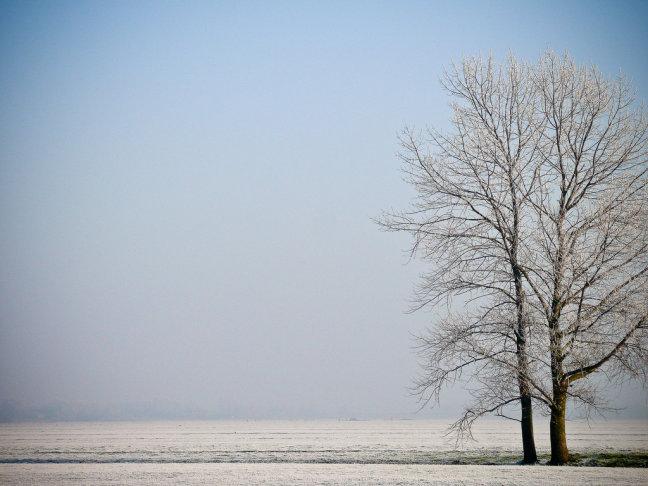 eenzame winter