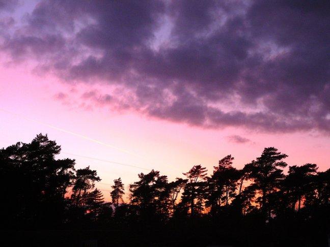 zonsondergang in de achtertuin