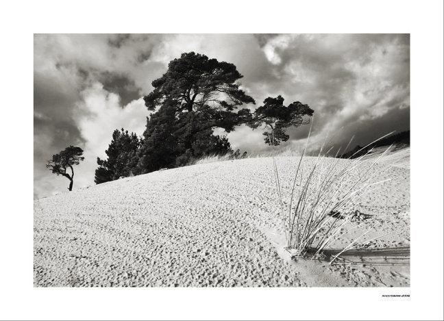 Het witte zand...