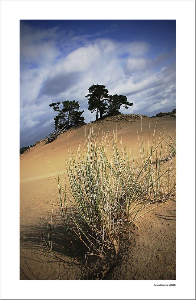 Wandelend zand...