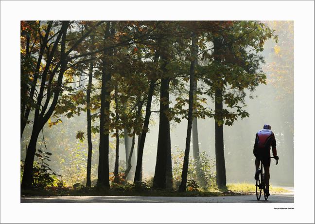 The cyclist...