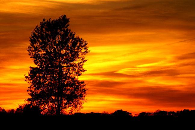 Groninger zonsondergang
