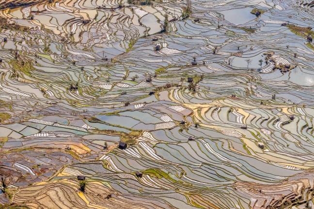De rijstterrassen van Yunnan