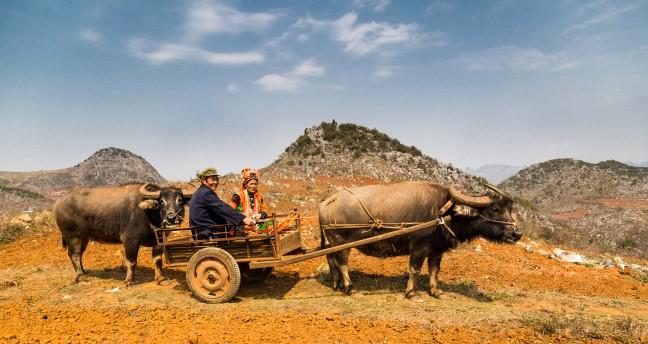 Pula Yi in een gekleurd landschap