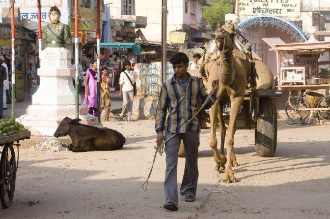 Straatbeeld in Mandawa