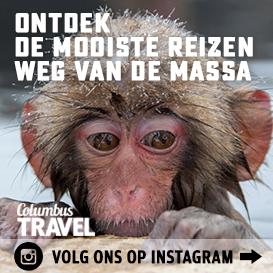 Volg ons op Instagram afbeelding